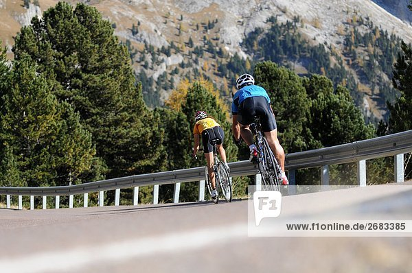 Rückansicht des zwei Mountainbiker Radfahren auf Country Road  Dolomiten  Italien
