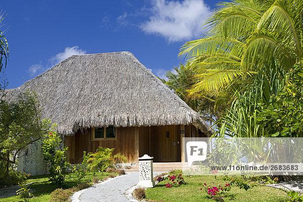 Pflanzen und Bäume vor der Hütte  Saint-Regis Resort  Bora Bora  Gesellschaft Island  Französisch-Polynesien