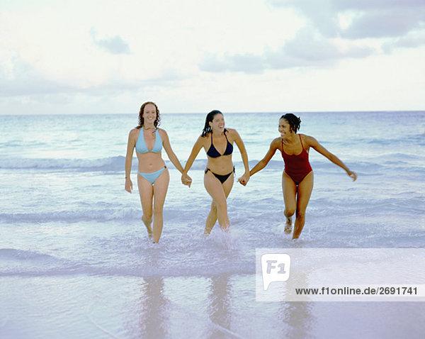 Drei junge Frauen zu Fuß und hält hände am Strand  Bermuda
