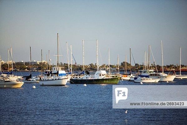 Yacht des angedockt an einen Hafen  San Diego Bay  Kalifornien  USA