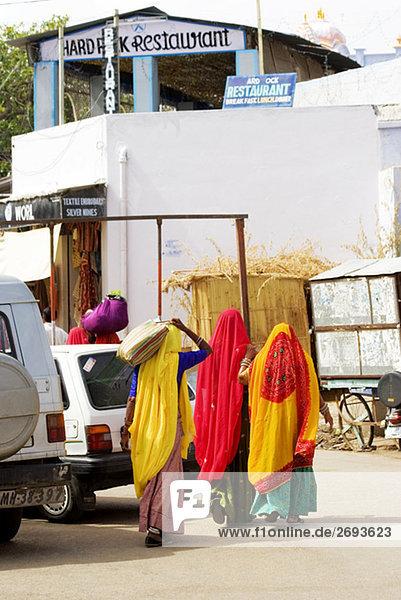 Rückansicht des drei Frauen gehend auf die Straßen  Pushkar Rajasthan  Indien
