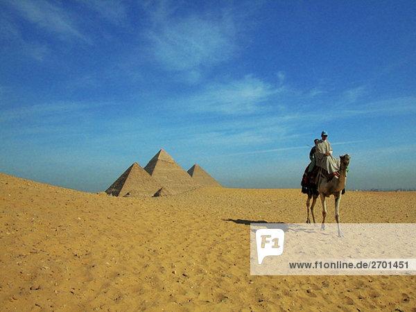 Zwei Menschen auf einem Kamel an den Pyramiden  Pyramiden  Giza  Kairo  Ägypten