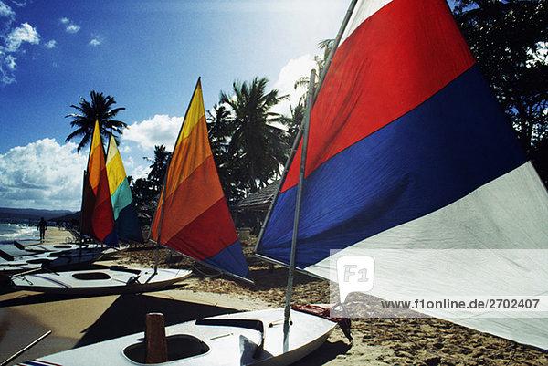 Hell farbigen Segel auf windsurf-Boards in Jamaika