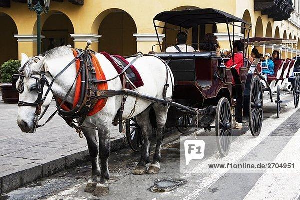 Horsedrawns an einem Gebäude  Plaza-de-Armas  Lima  Peru