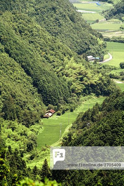 hoch oben Gebäude Tal Ansicht Flachwinkelansicht Winkel Shikoku