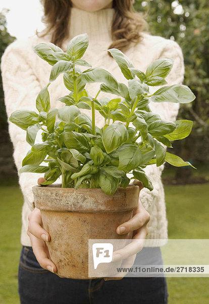 Ein junges Weibchen mit einer Basilikumpflanze
