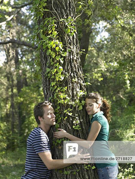 Paar umarmender Baum