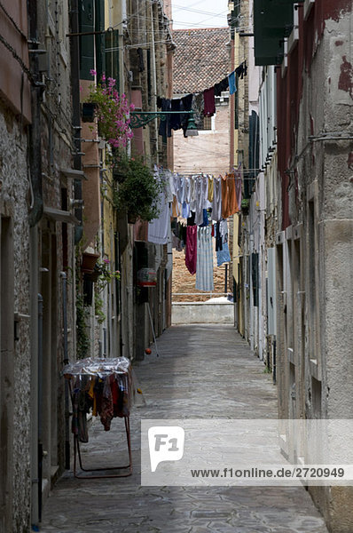 Italy  Venice  Clotheslines in lane