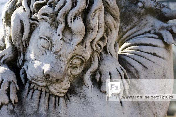 Löwenskulptur  Nahaufnahme