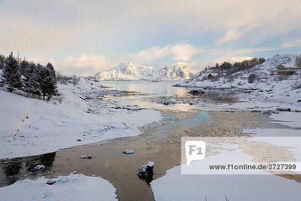 Bucht im Winter in der Nähe von Svolvaer  der Lofoten  Norwegen