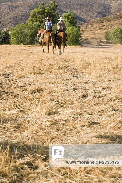 Zwei Cowboys  die auf einem Feld reiten. Zwei Cowboys, die auf einem Feld reiten.