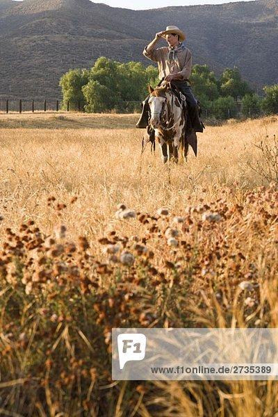 Ein Cowboy  der ein Pferd durch ein Feld reitet. Ein Cowboy, der ein Pferd durch ein Feld reitet.