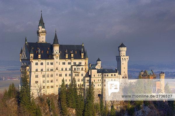 Bäume vor Schloss  Schloss Neuschwanstein  Allgäu  Bayern  Deutschland