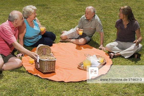 Zwei senior Paare bei Picknick