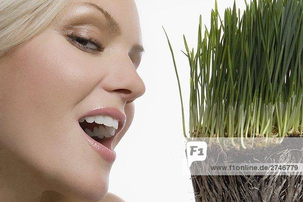 Nahaufnahme einer jungen Frau lächelnd mit Wheatgrass an ihr Gesicht