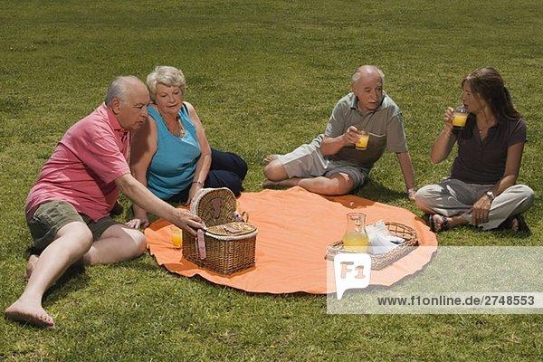 Erhöhte Ansicht von zwei senior Paare bei einem Picknick
