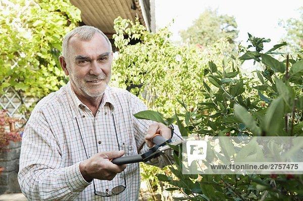 Man in garden Man in garden