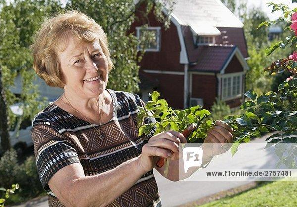 Woman cutting a twig