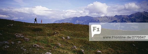Blick über die Allgäuer Alpen  Allgäu  Bayern  Deutschland