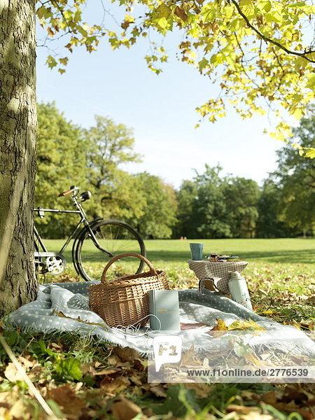 Warenkorb auf Decke im park