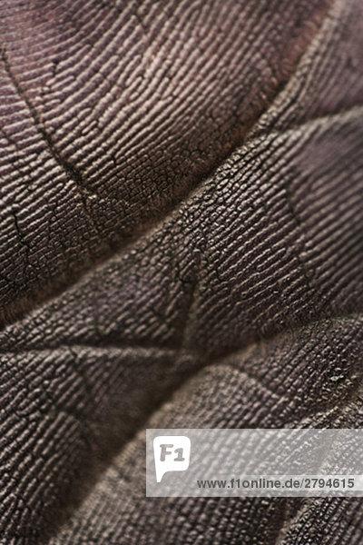 Geschwärzte Handfläche  extreme Nahaufnahme