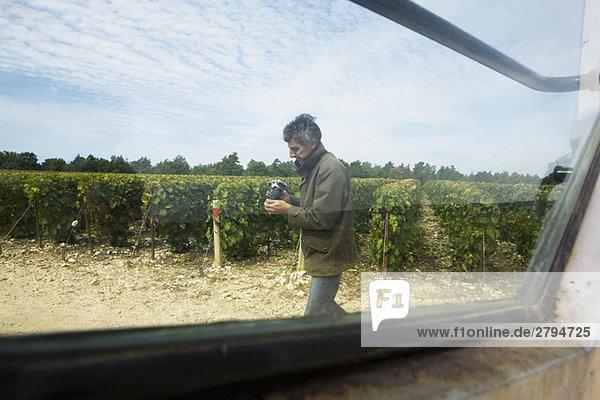 Frankreich  Champagne-Ardenne  Aube  Mann im Weinberg  Kamera haltend  durchs Fenster gesehen