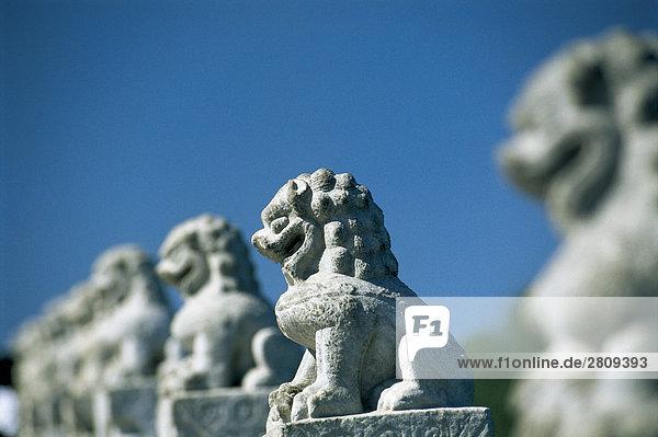 die steinernen Löwen in der Sommerpalast  Beijing