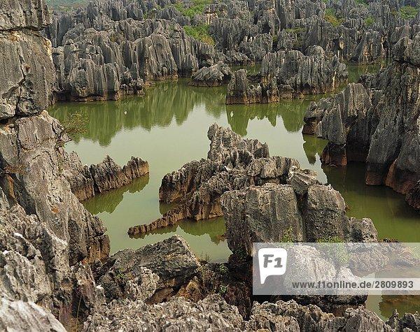China  Shilin in der Provinz Yunnan