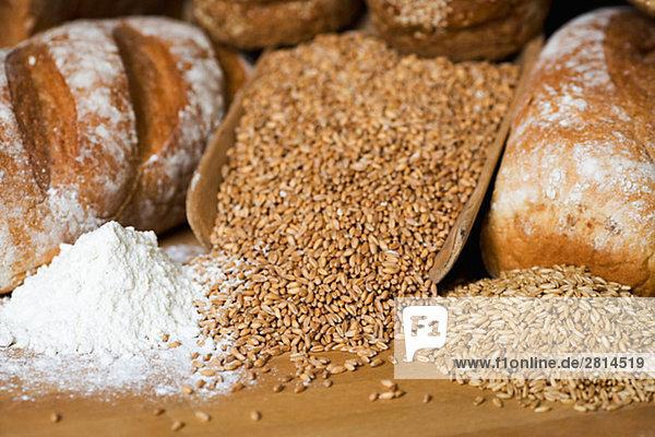 Brot Korn Mehl und Hafer Schweden.