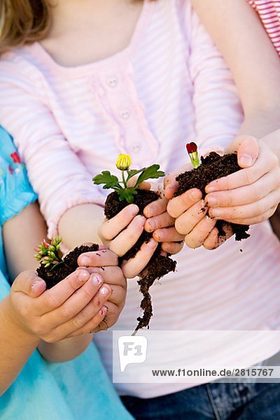 Three girls holding plants in their hands.