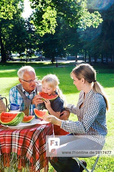 Senior Männer Frauen und Mädchen mit einem Picknick Schweden.