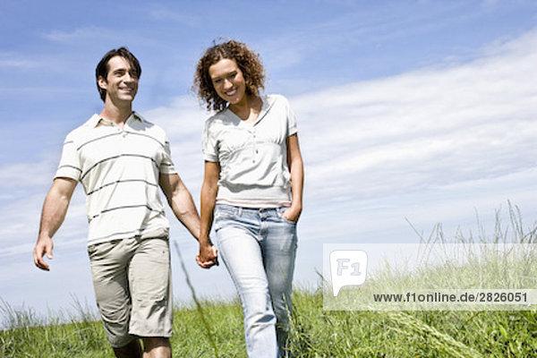 junges Paar gehen Hand in Hand auf Wiese