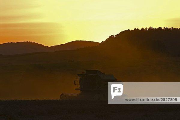 Silhouette der Mähdrescher im Feld bei Sonnenuntergang  Landkreis Marburg-Biedenkopf  Hessen  Deutschland