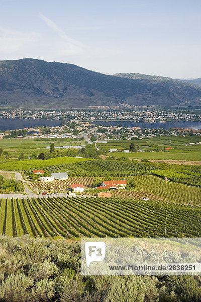 Großstadt See Ansicht British Columbia Kanada Weinberg