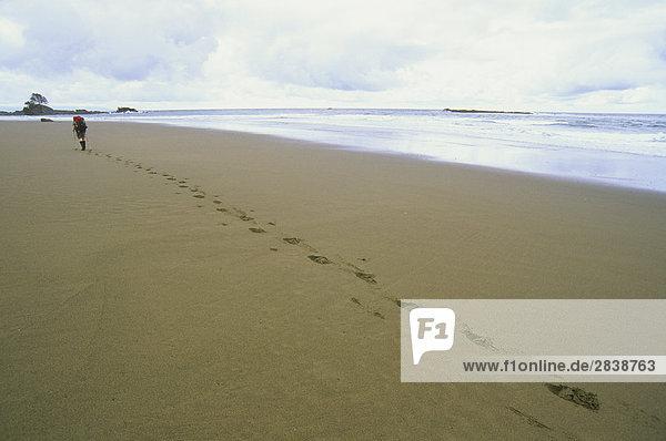 nahe junge Frau junge Frauen Strand folgen strecken Fluss wandern Einsamkeit Pazifischer Ozean Pazifik Stiller Ozean Großer Ozean vorwärts British Columbia Kanada Trasse Vancouver Island Westküste