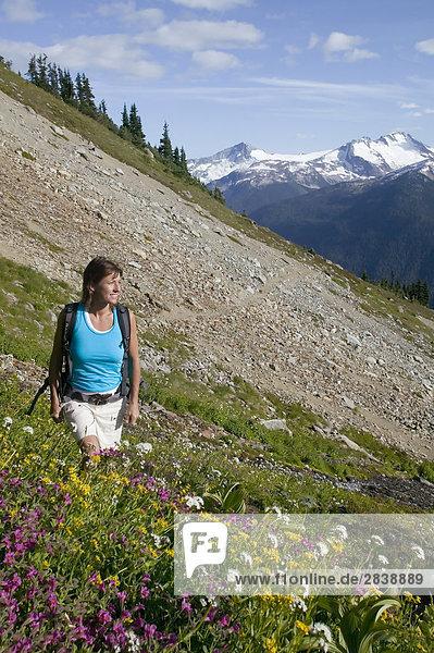 Frau Wandern in Whistlers Backcountry in Sommer  British Columbia  Kanada.