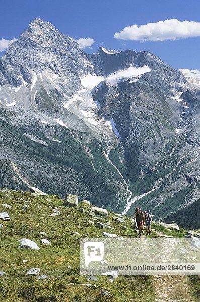 Wandern bis Abbott Ridge mit Mt Sir Donald im Hintergrund Glacier-Nationalpark  British Columbia  Kanada.