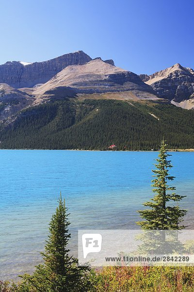 Nationalpark Wasser See Hintergrund Lodge Landhaus blau Unterricht vorwärts Eisfeld Alberta Banff Kanada Kristall