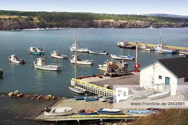 Ochre Pit Cove  Newfoundland  Canada  Harbour  Fishing boats  Commercial fishery