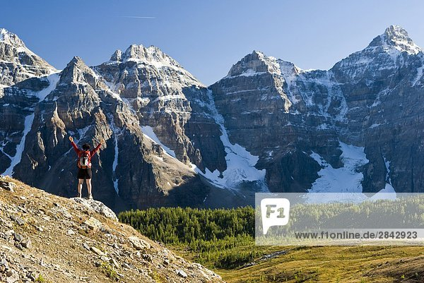 Eine weibliche Wanderer Blick auf Lärche Tal auf seinem Weg ins Sentinel Pass in der Nähe von Moraine Lake  Banff-Nationalpark  Alberta  Kanada.
