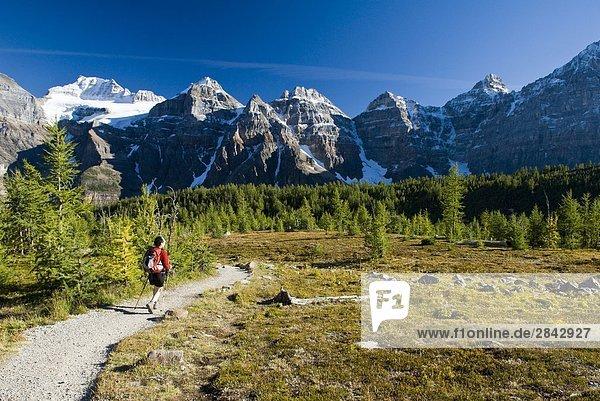 Eine weibliche Wanderer in Lärche Tal in der Nähe von Moraine Lake im Banff-Nationalpark  Alberta  Kanada.