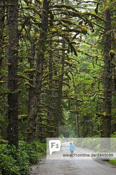 Junges Mädchen auf dem Weg zum Tow Hill  Naikoon Provincial Park  Queen Charlotte Islands  British Columbia  Kanada