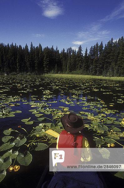Lodge  Landhaus  Urlaub  Kanu  Teamwork  10  British Columbia  Kanada  Lilie