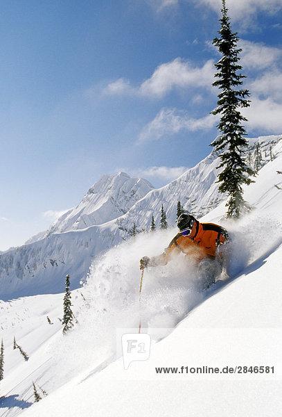 Skifahrer Skifahren frische Tiefe Pulver in Fernie Alpine Resort  East Kootenays  British Columbia  Kanada.
