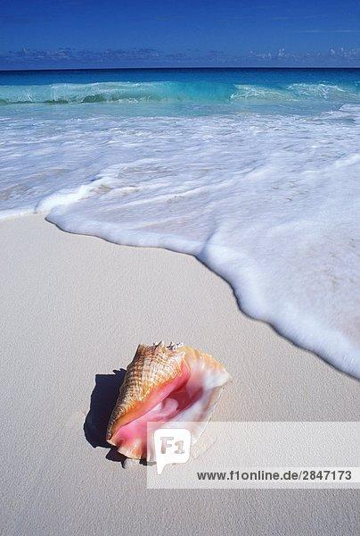 Mexiko Halbinsel Yucatan