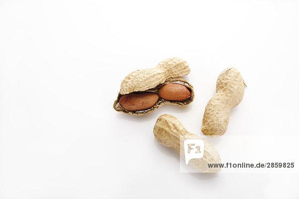 Erdnüsse  erhöhte Ansicht