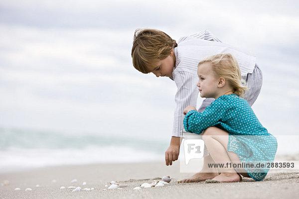 Der Junge und seine Schwester spielen mit Muscheln am Strand.