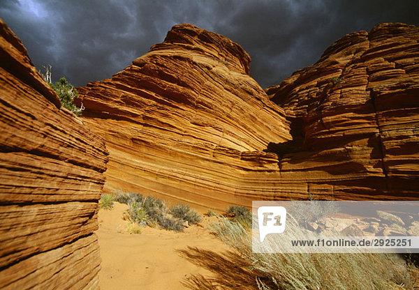 Rock formations  Buckskin Gulch  Utah-Arizona  USA