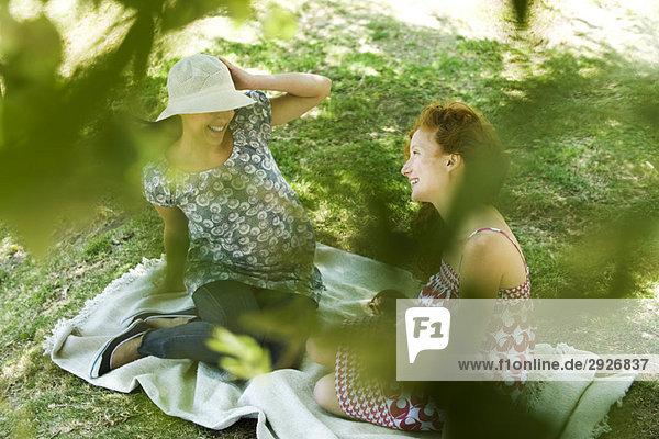 Zwei junge Frauen  die auf einer Decke sitzen  reden  durchs Laub gesehen.