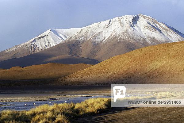 Landscape in the Uyuni Highlands with lagoon and glacier  Bolivia